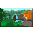 Squirrel on a branch in the coniferous forest vector image vector image
