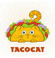 tacocat surprised character fast food taco symbol vector image vector image