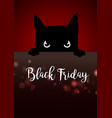 black friday poster with angry black cat vector image vector image