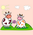 bull and cow vector image