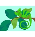 Chameleon masquerades as leaves animals and vector image