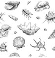 seamless hand drawn seashells pattern backgrounds vector image