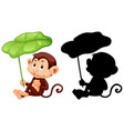 set monkey holding leaf and its silhouette vector image vector image