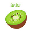 tropical fruitkiwi whole halfflat style vector image vector image
