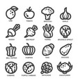 vegetable thin line icon vector image vector image