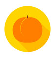 apricot flat circle icon vector image