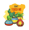 banner with cactus in pots or sticker with cacti vector image vector image
