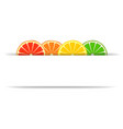 Citrus with paper banner vector image vector image