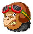gorilla wearing helmet racer vector image