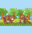 grizzly bears in forest vector image vector image