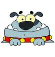Gray Bulldog vector image