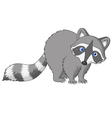 Cute raccoon cartoon vector image vector image