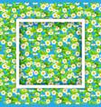 floral seasonal frame vector image vector image