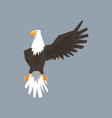 north american bald eagle character raising one vector image vector image