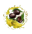 olive oil splashing isolated vector image vector image