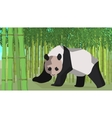 Panda in a bamboo grove animal nature vector image vector image