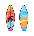 two colorful surfing boards isolated on white vector image vector image