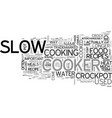 what exactly is a crockpot text word cloud concept vector image vector image