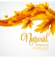 Autumn maple leaves on wave background vector image