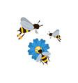 three bees icon vector image