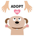 adopt me dog face pet adoption puppy pooch vector image vector image
