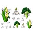 Broccoli garlic and corn vegetables vector image vector image