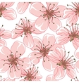 Cherry blossom background seamless flowers pattern vector | Price: 1 Credit (USD $1)