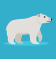 cute big polar white bear icon isolated on blue vector image vector image