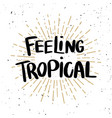 feeling tropical lettering phrase on light vector image