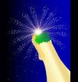 firework celbration bottle vector image vector image