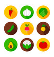 fresh vegetables flat circle icons vector image