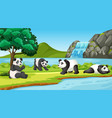 scene with cute pandas in park vector image vector image