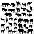 set animals vector image vector image