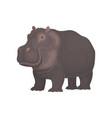 hippopotamus wild african animal vector image