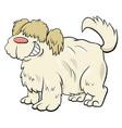 shaggy sheep dog cartoon character vector image vector image