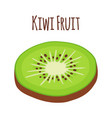 tropical fruit kiwi slice of kiwi flat vector image vector image