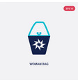 two color woman bag icon from fashion concept vector image vector image