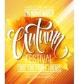 Autumn Festival poster template vector image vector image