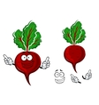 Cartoon fresh red beetroot vegetable vector image