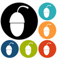 icon acorn vector image vector image