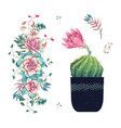 succulents cacti hand drawn on a white background vector image vector image