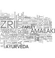 what exactly is zrii text word cloud concept vector image vector image