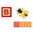 b is for bee vector image