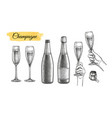 clinking glasses and champagne bottles vector image vector image
