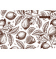 hand drawn citrus fruits background lemons design vector image vector image