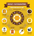 honey infographic concept flat style vector image vector image