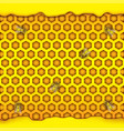 honeycombs in the shape of hexagon puddle of vector image vector image
