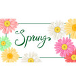 spring banner hand drawn lettering background vector image