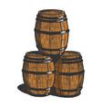 wine beer barrels sketch vector image vector image