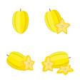 carambola star fruit whole fruit half slice vector image